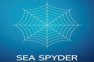 seaspyder-logo-whisky-market-solutions